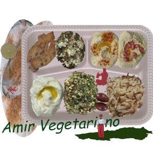 Amir Vegetariano